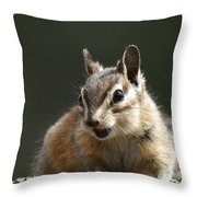My Name Is Alvin Throw Pillow