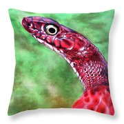 My Name Is Earl Throw Pillow