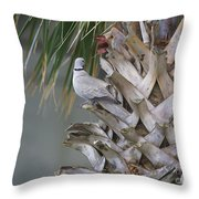 My Own Palm Tree Throw Pillow