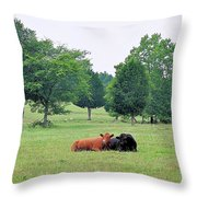 My Own True Love Throw Pillow by Jan Amiss Photography