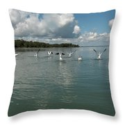 My Pelicans Throw Pillow