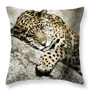 My Place In The Sun Throw Pillow
