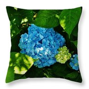 My Pride And Joy Hydrangea Throw Pillow