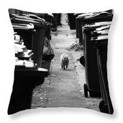 My Prowl  Throw Pillow