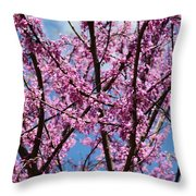 My Redbuds In Bloom Throw Pillow