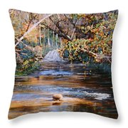 My Secret Place Throw Pillow