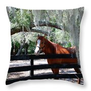 My Southern Friend Throw Pillow