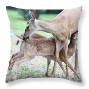 My Sweet Babies Throw Pillow