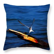 My Tern To Perch Throw Pillow