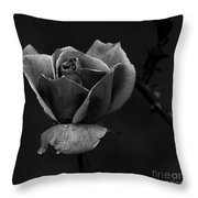 My Time To Come... Throw Pillow