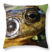 My What Big Eyes You Have Throw Pillow