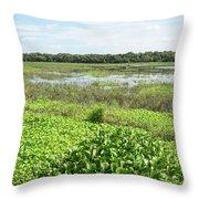 Myakka River And Marshes Throw Pillow
