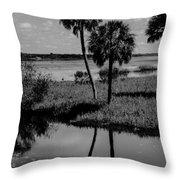 Myakka River Reflections Throw Pillow
