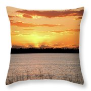 Myakka Sunset Throw Pillow