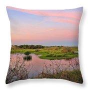 Myakka Wetlands By H H Photography Of Florida Throw Pillow