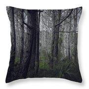 Myakka Woods Throw Pillow