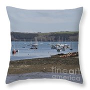 Mylor Panorama Throw Pillow