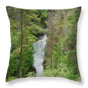 Myrtle Creek Falls  Throw Pillow