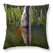 Mysteries Of The Deep Throw Pillow