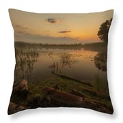 Mysterious Morning Time In Swamp Area. Landscape Throw Pillow