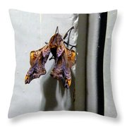 Mysterious Visitor Throw Pillow