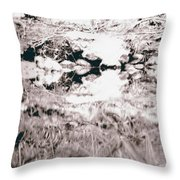 Mysterious Waterline Throw Pillow