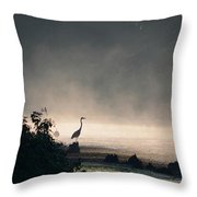 Mystery Heron Throw Pillow