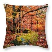 Mystery Of Autumn Throw Pillow