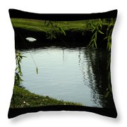 Mystery  Pond In The Green Throw Pillow