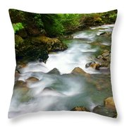 Mystic Creek Throw Pillow