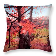 Mystic Day  Throw Pillow