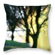 Mystic Fall Throw Pillow