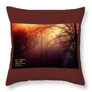 Mystic Forest At Dawn L A Throw Pillow