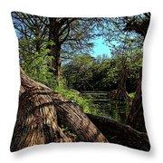 Mystic Pond Throw Pillow