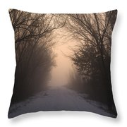 Mystic Trail Throw Pillow