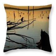 Mystical Sunrise On The Lake Throw Pillow