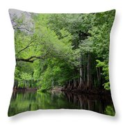 Mystical Withlacoochee River Throw Pillow