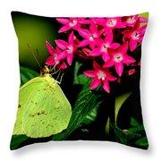 Mystical World 3 Throw Pillow