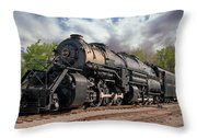 N And W 2156 Throw Pillow