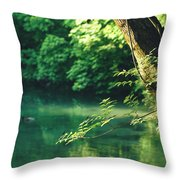 N001 Impression 4k Throw Pillow