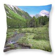 N005 Impression Throw Pillow