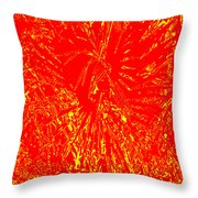 Nagual Flight Throw Pillow by Eikoni Images