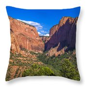 Nagunt Mesa Throw Pillow