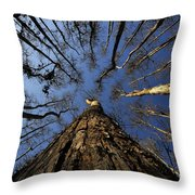 Naked Cypress Throw Pillow