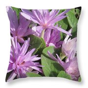 Naked Lady Throw Pillow
