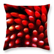 Naked Porcupine Throw Pillow by Stephen Mitchell