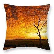 Naked Tree Throw Pillow