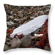 Nameless Feather 1 Throw Pillow