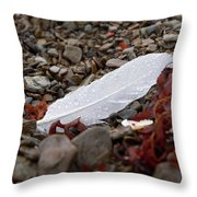 Nameless Feather 1 Throw Pillow
