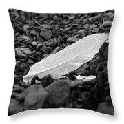 Nameless Feather 2 Throw Pillow